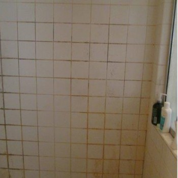 M Bath Remodel (Before)